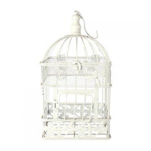 Birdcage White Square Largex