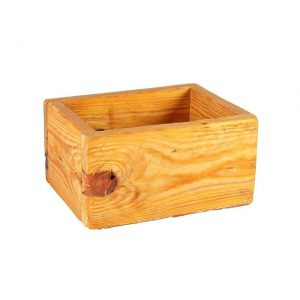 Container Pine Planter Smallx