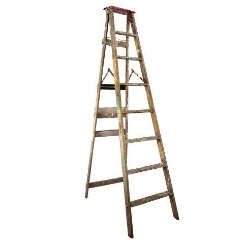 Furniture Ladder Harold  Sided