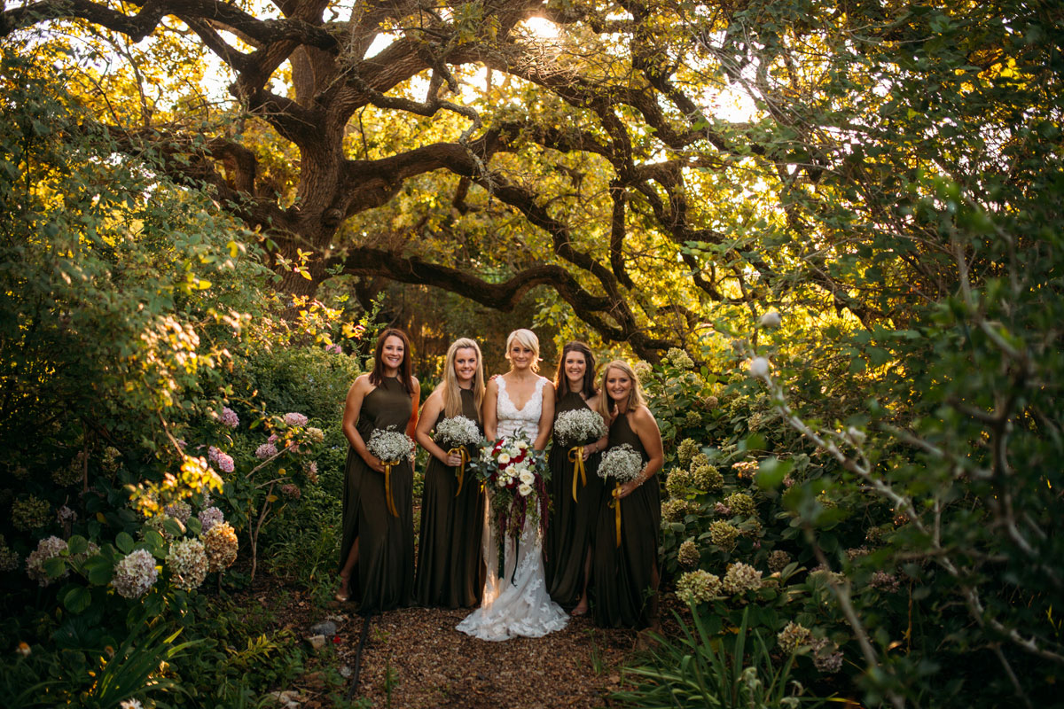 Golden Sunrays Decorate Bride And Bridesmaids