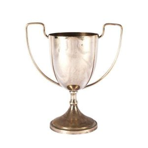 Vase Silver Trophy Large Mixed My Pretty Vintage Décor Hire wedding coordinating Paarl