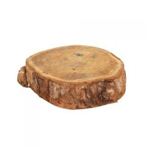 Wooden Slice Medium  cm