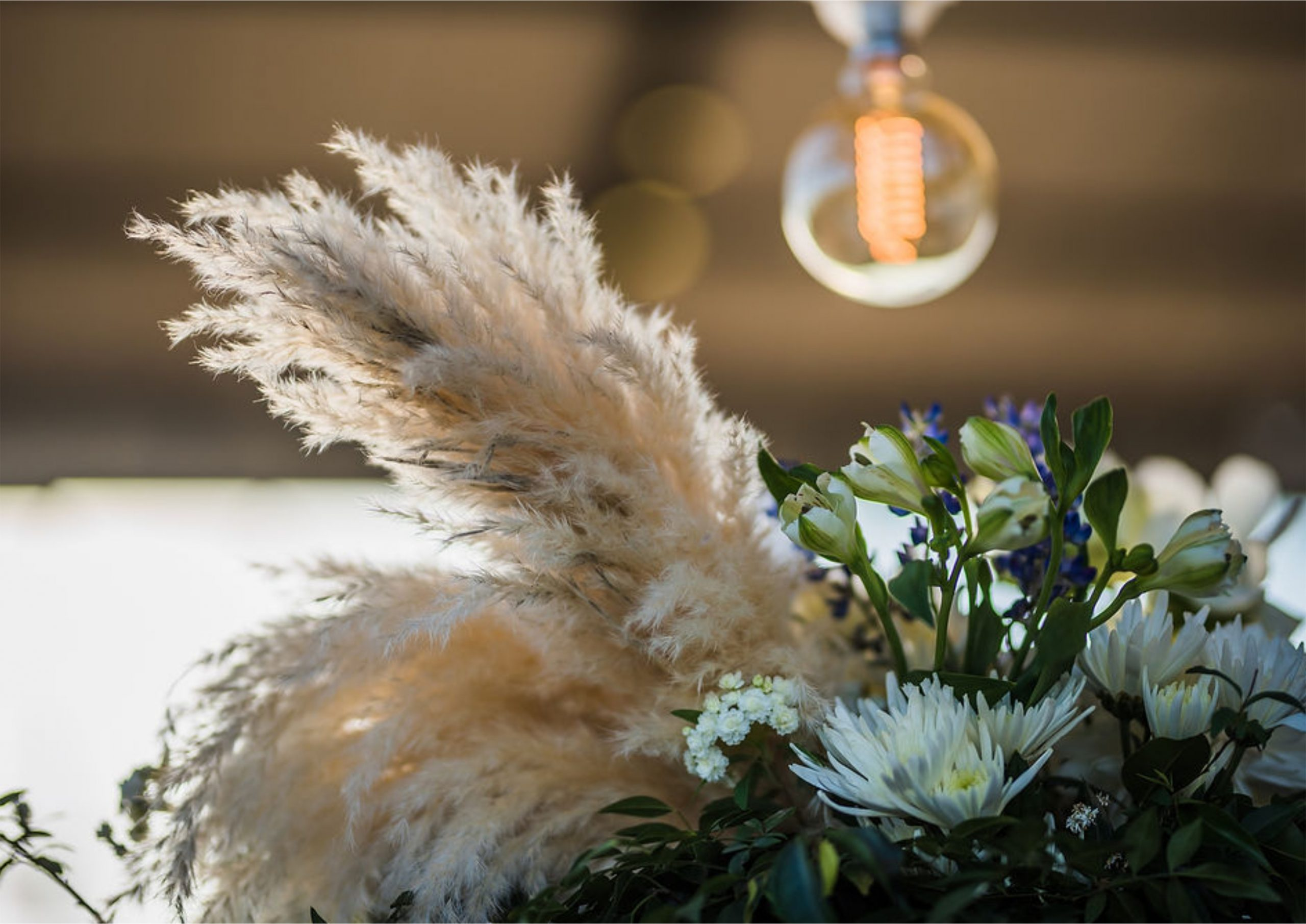 Bruidsgids Wedding Guide My Pretty Vintage Romantic Vineyard Setting Pampas Grass Orchids Wedding Flowers Decor Events Photgraphy by Gustav Klotz